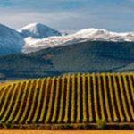 Medidas Económicas, Presupuestarias y Fiscales para La Rioja 2019. Ley 1/2019.