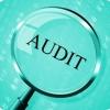 Auditoría Obligatoria. Límites, cifras y requisitos.